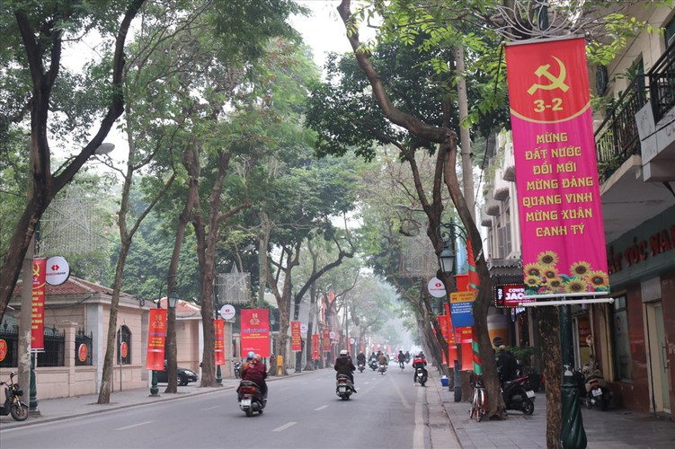 hanoi receives decorative makeover to celebrate party's founding anniversary hinh 6