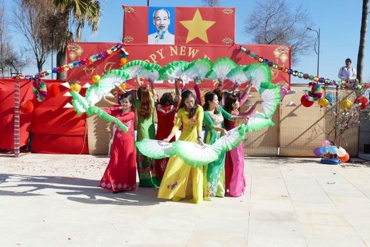 vietnam festival in cyprus sees 7,000 overseas vietnamese in attendance hinh 4