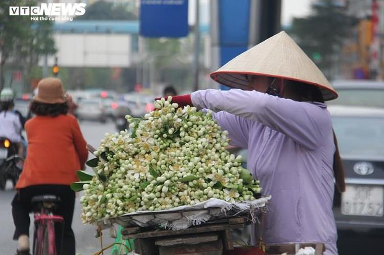 people across hanoi enjoy fresh scent of grapefruit flowers hinh 3