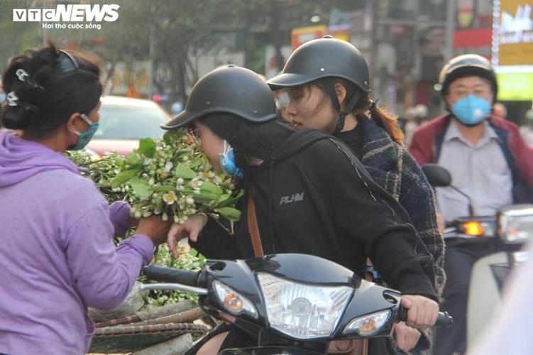 people across hanoi enjoy fresh scent of grapefruit flowers hinh 5