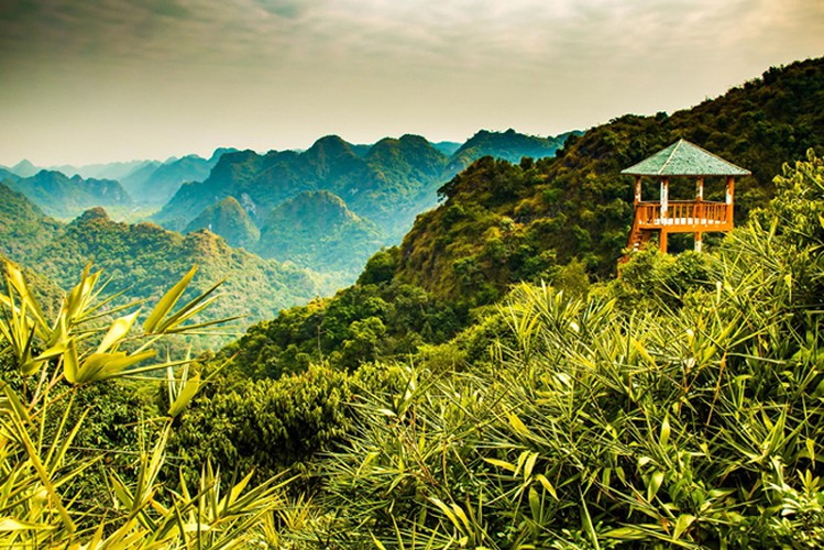 wanderlust offers 17 suggestions on best things to do in vietnam hinh 3