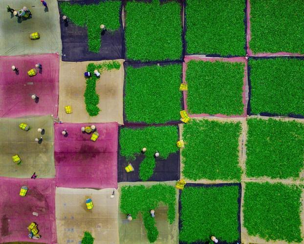 vietnamese photographer wins sony world photography awards hinh 1