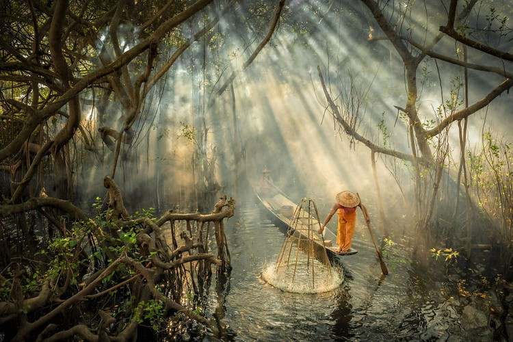 local photographers into top 50 of #water2020 contest of agora images hinh 11