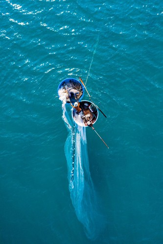 local photographers into top 50 of #water2020 contest of agora images hinh 7
