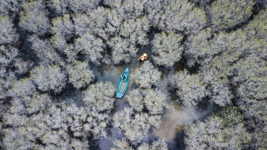 local photographers into top 50 of #water2020 contest of agora images hinh 8