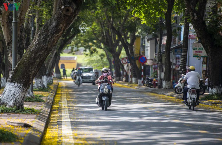april sees flowers bloom throughout the streets of hue hinh 1