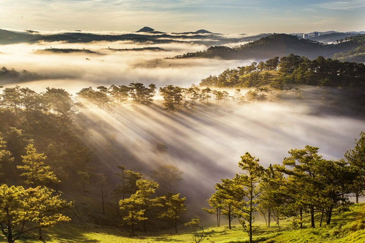 romantic da lat hidden in magnificent morning clouds hinh 14