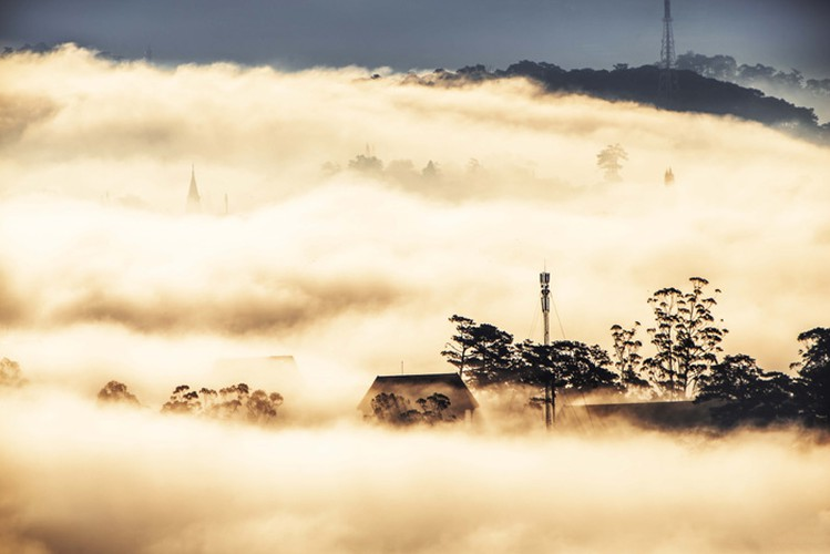 romantic da lat hidden in magnificent morning clouds hinh 2