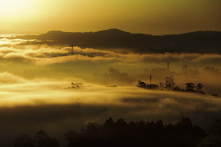 romantic da lat hidden in magnificent morning clouds hinh 3