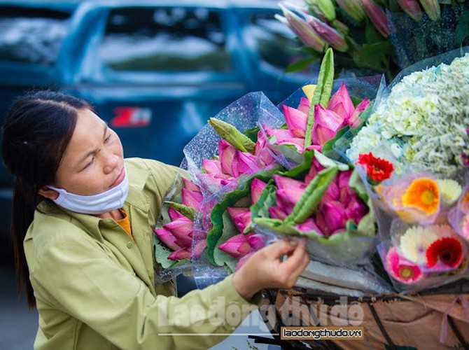 streets around hanoi enjoy sight of blossoming lotus flowers hinh 11