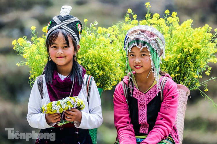 images of playful children on stone plateau in ha giang hinh 7