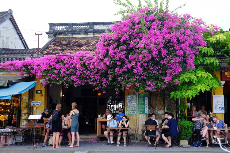 vietnam among leading global travel destinations for 2021 hinh 2