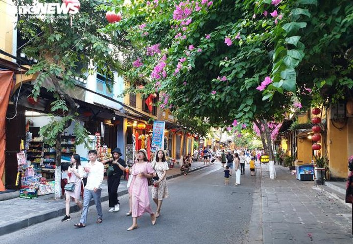 vibrant atmosphere returns to hoi an's old quarter following re-opening hinh 5