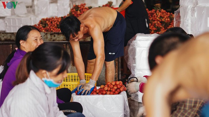 vietnamese fruit increasingly popular among foreign consumers hinh 8