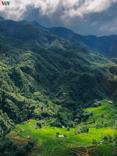romantic valley seen from fansipan cable car hinh 8