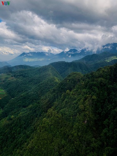 romantic valley seen from fansipan cable car hinh 9