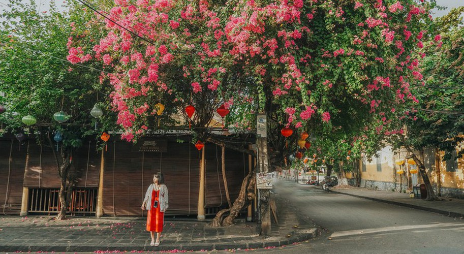discovering spots in hoi an perfect for taking amazing selfies hinh 6