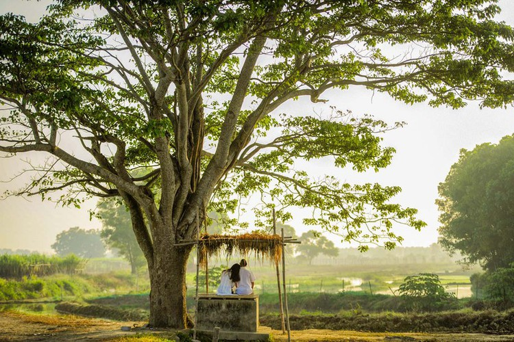 hue proves to be ideal destination for filmmakers due to romantic landscapes hinh 3