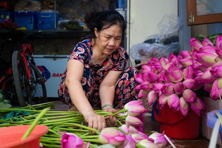 how hanoi's lotus-scented tea is made hinh 3