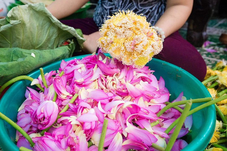how hanoi's lotus-scented tea is made hinh 5