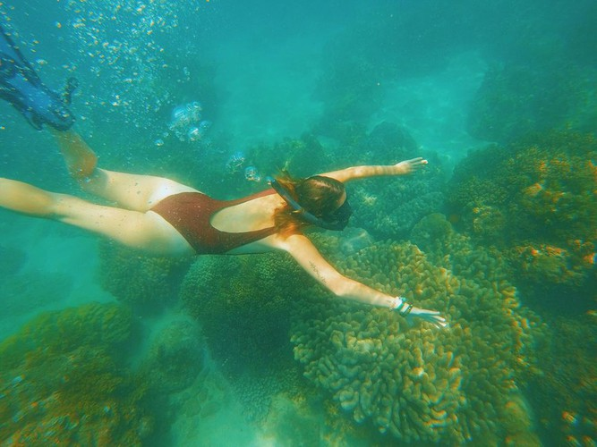 leading vietnamese locations to view coral reefs hinh 7