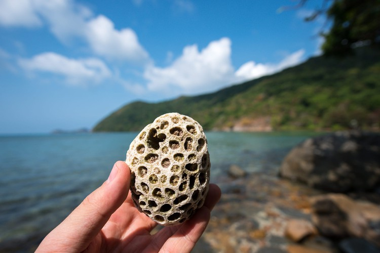 images of peaceful con dao island taken by foreign photographers hinh 14