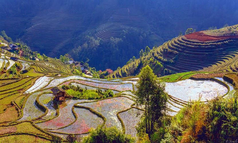 mu cang chai appears picturesque through lens of foreign photographers hinh 12