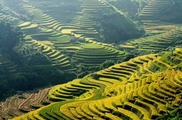 mu cang chai appears picturesque through lens of foreign photographers hinh 1