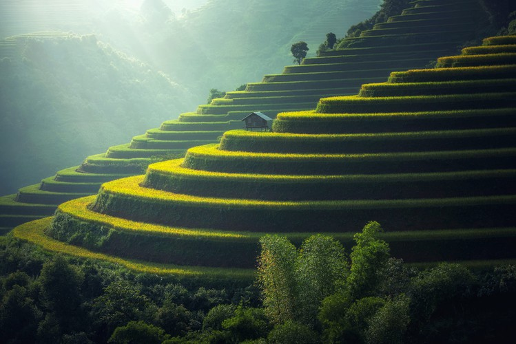 mu cang chai appears picturesque through lens of foreign photographers hinh 3