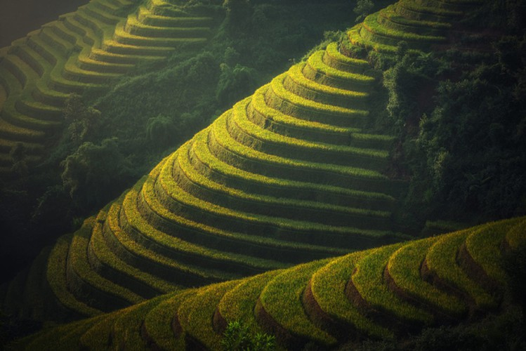 mu cang chai appears picturesque through lens of foreign photographers hinh 4