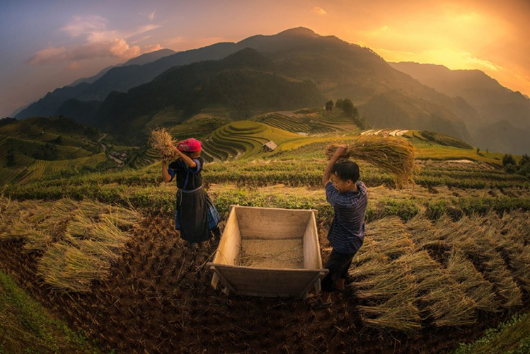 mu cang chai appears picturesque through lens of foreign photographers hinh 6