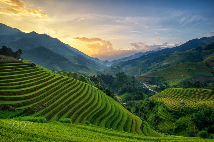 mu cang chai appears picturesque through lens of foreign photographers hinh 8