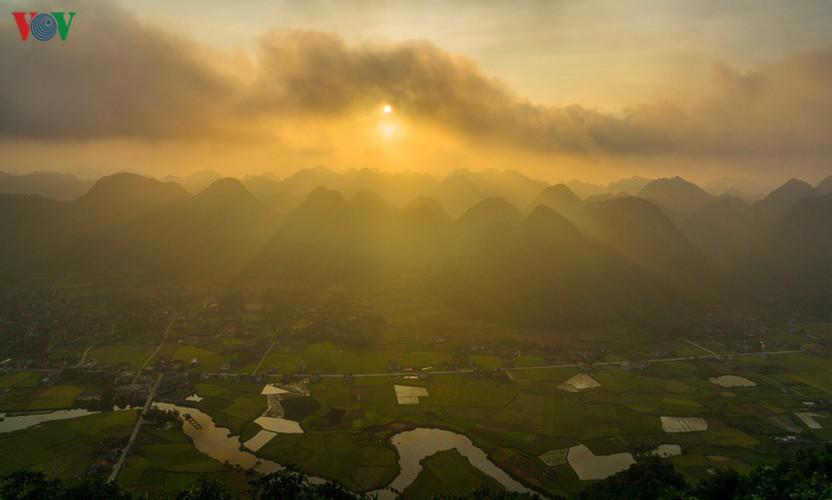 bac son rice fields turn yellow amid harvest season hinh 12