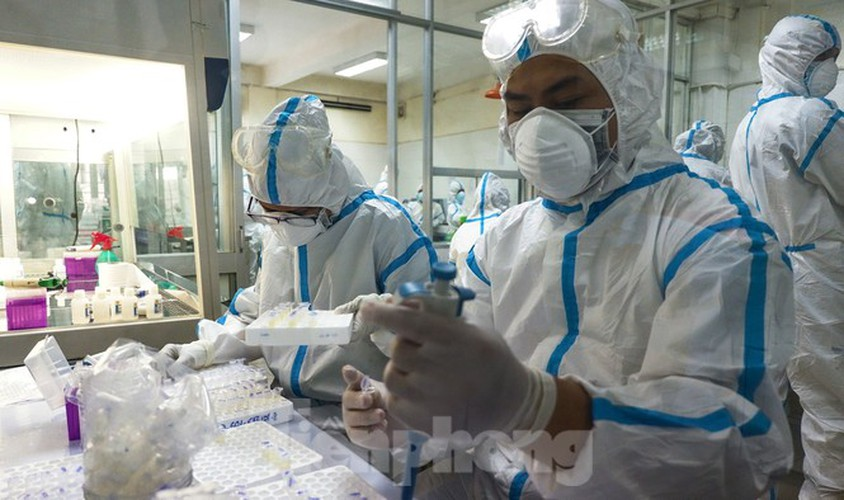 hard-working technicians at da nang lab seek covid-19 infection cases hinh 1