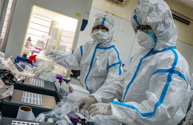 hard-working technicians at da nang lab seek covid-19 infection cases hinh 8