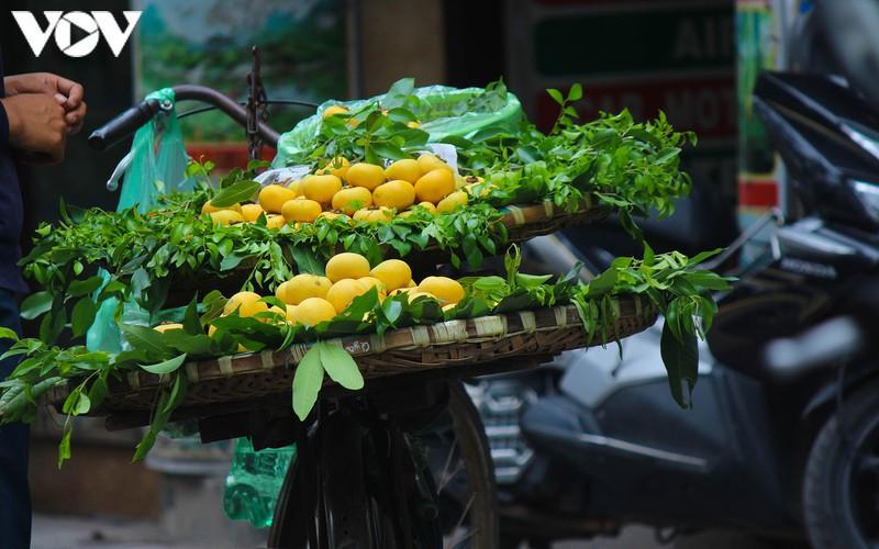 hanoi specialties during autumn months hinh 10
