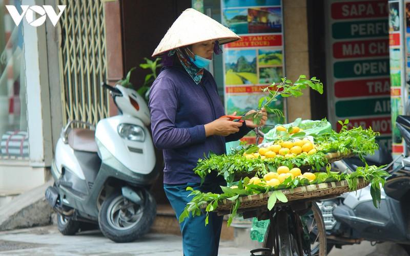 hanoi specialties during autumn months hinh 11