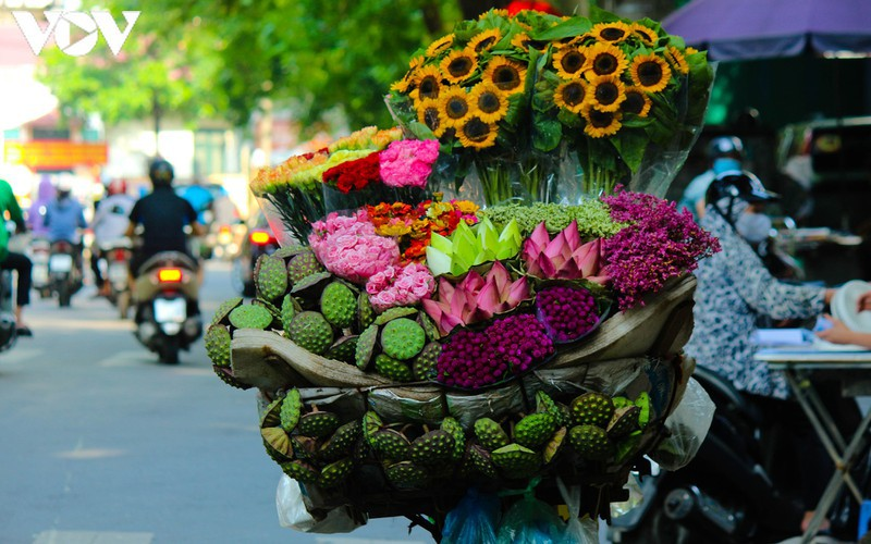 hanoi specialties during autumn months hinh 14