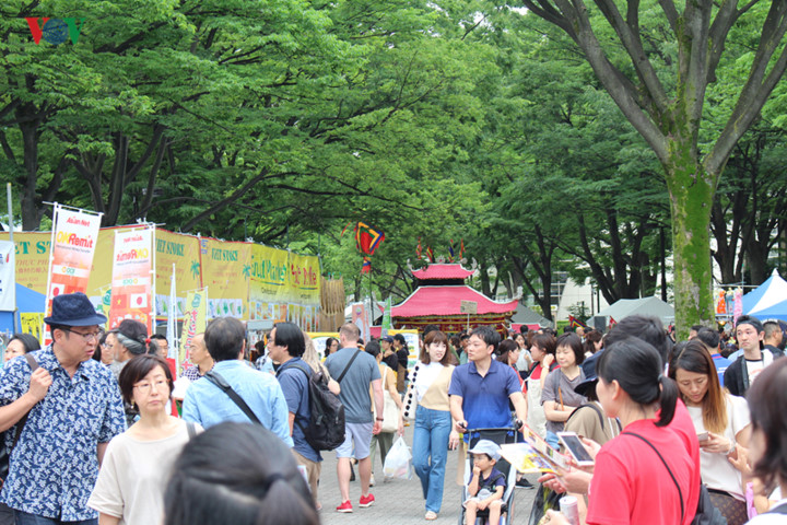 japanese audience get taste of vietnamese culture at festival 2019 hinh 14