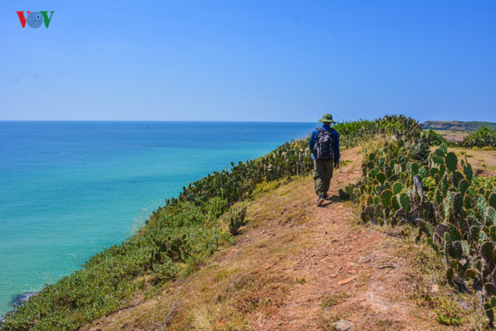 discovering stunning natural landscapes of phu yen in summer hinh 9