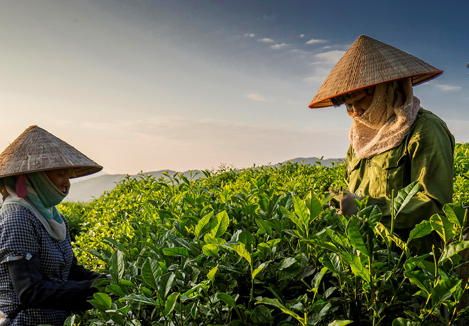 top destinations for travellers in thai nguyen hinh 2