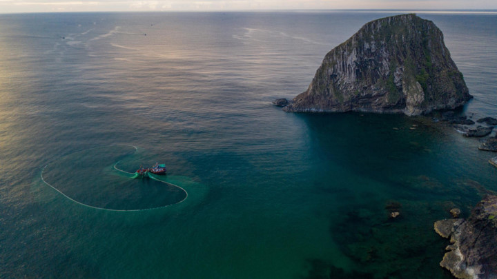 dramatic images of fishing nets captured from above in phu yen hinh 1