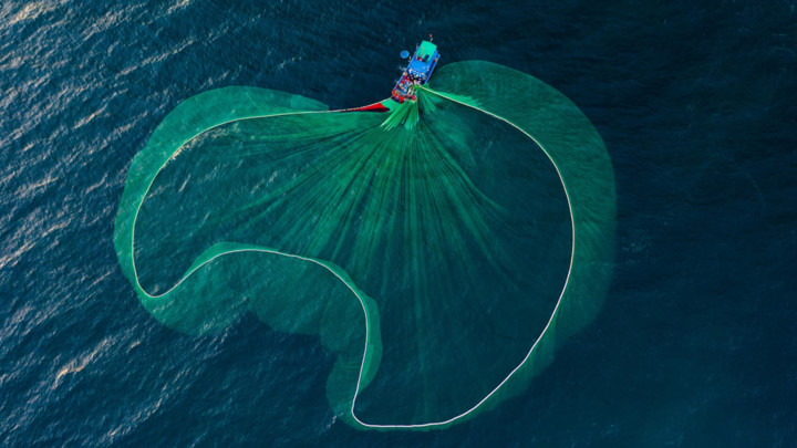 dramatic images of fishing nets captured from above in phu yen hinh 3