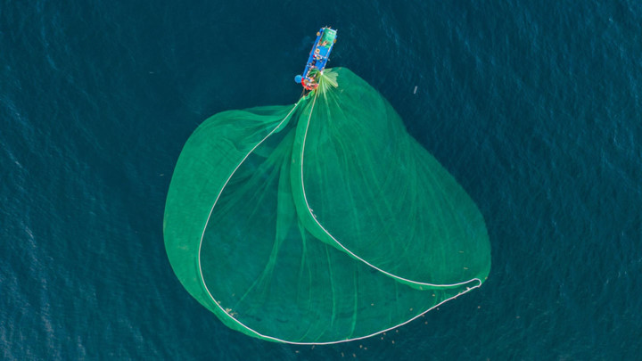 dramatic images of fishing nets captured from above in phu yen hinh 5