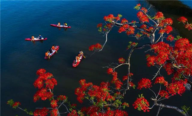 dramatic images showcase vietnam's beautiful landscapes hinh 16