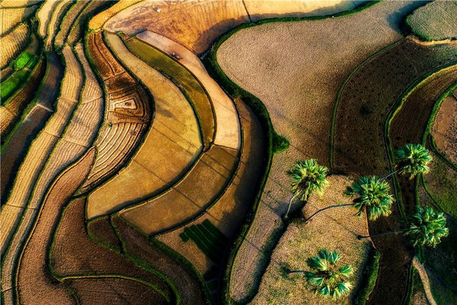 dramatic images showcase vietnam's beautiful landscapes hinh 24