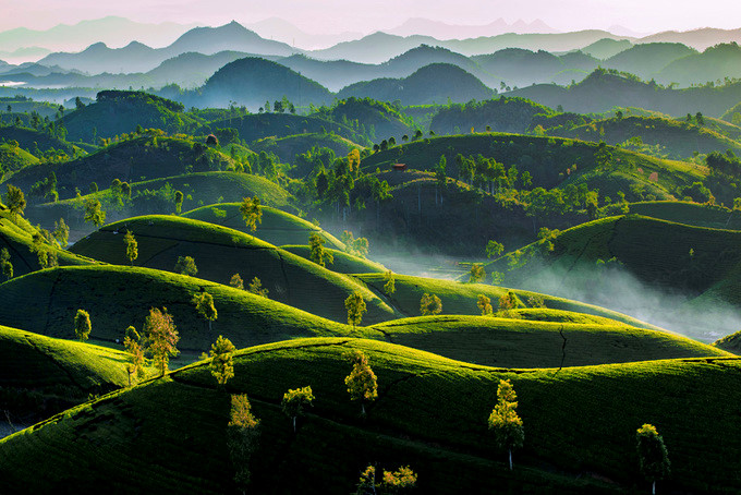 top 10 winning photos from 'vietnam's landscapes from height' contest hinh 5