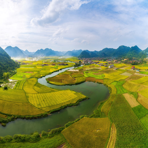 discovering stunning ripening paddy fields of bac son valley hinh 7