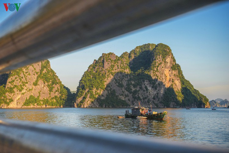discovering scenic coastal road in ha long hinh 6