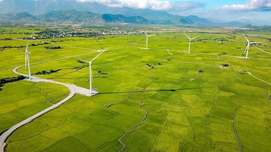 dam nai wind farm in phan rang proves a hit among young travelers hinh 1